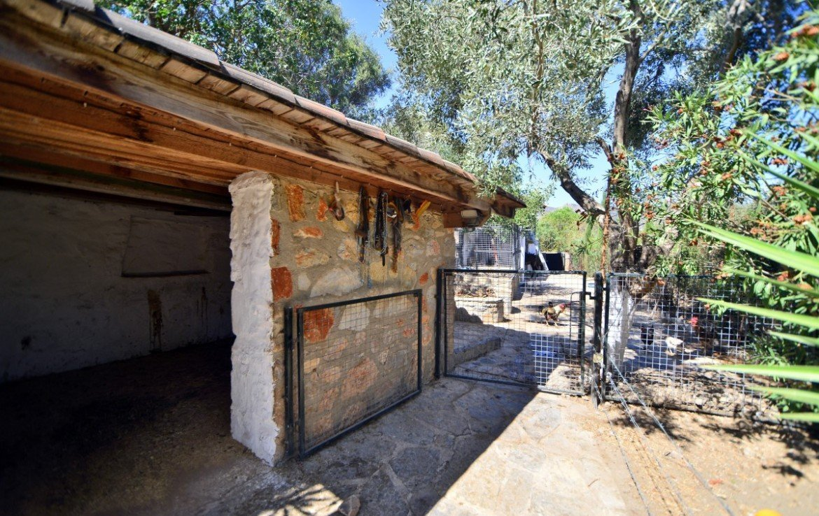 stables in the heart of Bodrum
